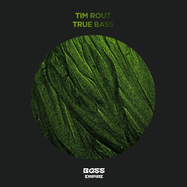 Музыка от Tim Rout в формате mp3