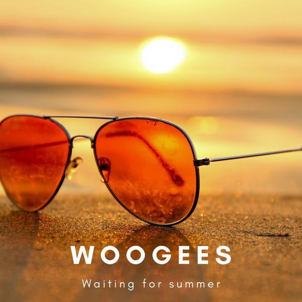 Музыка от Woogees в формате mp3
