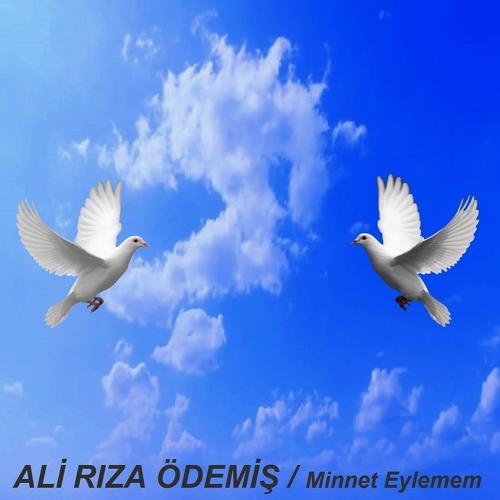 Ali Rıza Ödemiş - Dersim Dört Dağ İçinde  (2020)