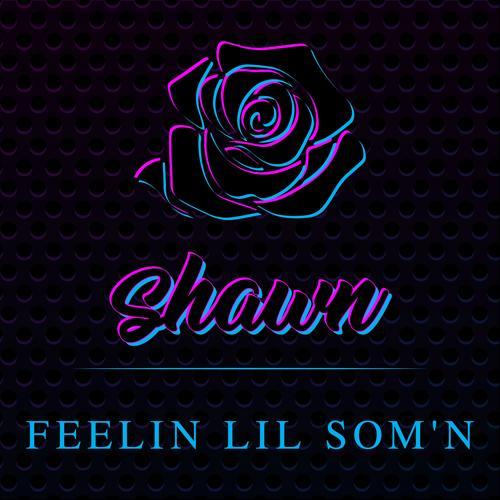 Shawn Stockman - Feelin Lil Som'n  (2018)