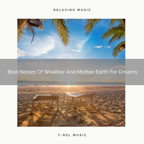 Zen Sounds & White Noise Baby Sleep Music - Beautiful Noises Of Waves And Animals For Ultra Absolute Recharge  (2020)