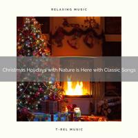 The Forest Escape - Enjoy Christmas Time with Calming Tunes and Bird Calls