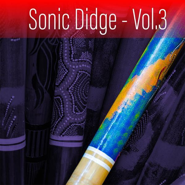 Альбом: Sonic Didge, Vol. 3