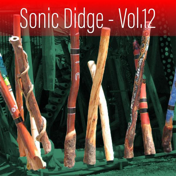 Альбом: Sonic Didge, Vol. 12