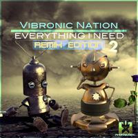 Vibronic Nation - Everything I Need (Jaiqoon Radio Edit)