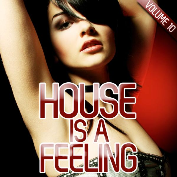Альбом: House is a Feeling, Vol. 10