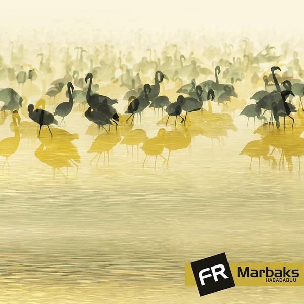 Альбом: Habadabuu
