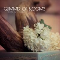 Glimmer of Blooms - Escape (Original Version)