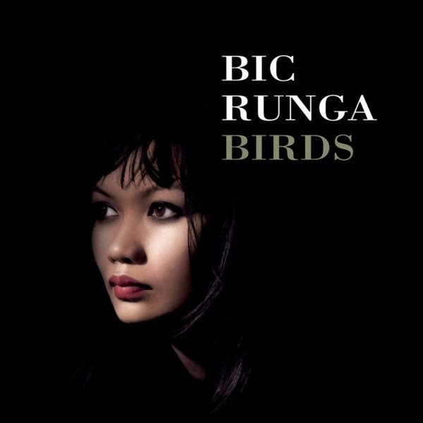 Альбом: Birds