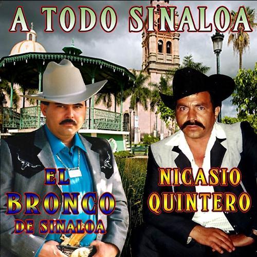 El Bronco De Sinaloa - La Cobra De Sinaloa  (2017)