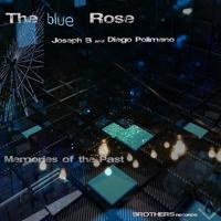 The Blue Rose - Volcano Lava Fire
